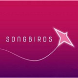 Songbirds手游正式版